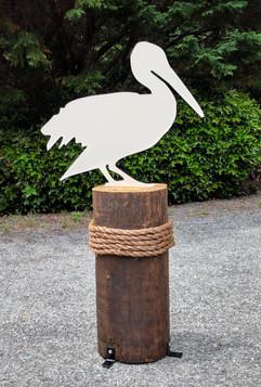 pelican-2_1_orig.jpg