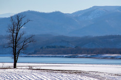 Winter at Douglas Lake