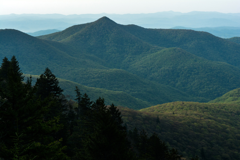 Morning in the Blue Ridge Mountains