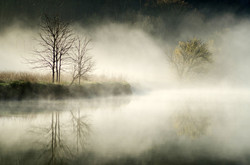 Morning on the Holston River