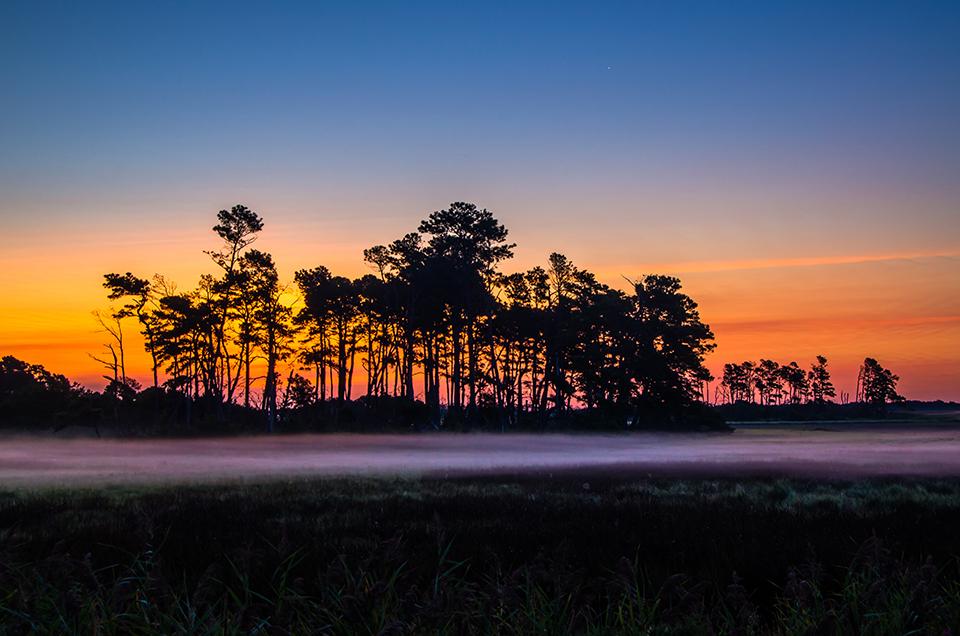 Sunrise on the Marsh, Assateague