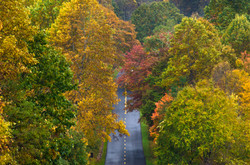 Autumn Along the Parkway