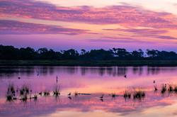 Sunrise at Assateague Island