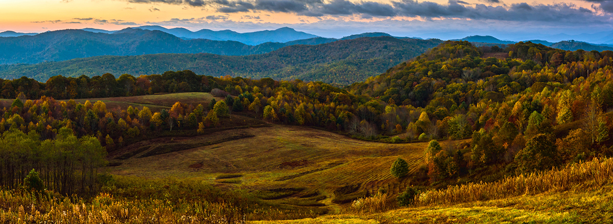 Autumn at Max Patch