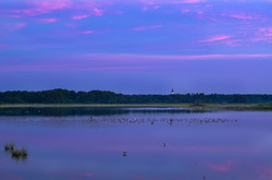 Pink Clouds Over Assateague