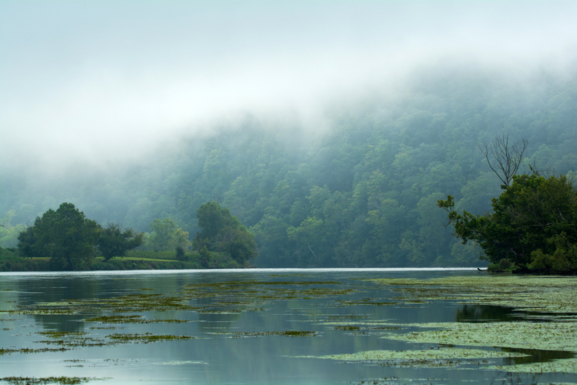 Fog Along the Holston River