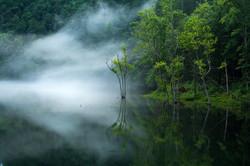 Foggy Morning on Wilbur Lake
