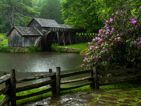 A Rainy Day Along the Blue Ridge Parkway
