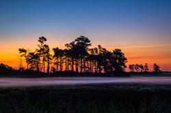An Assateague Sunrise