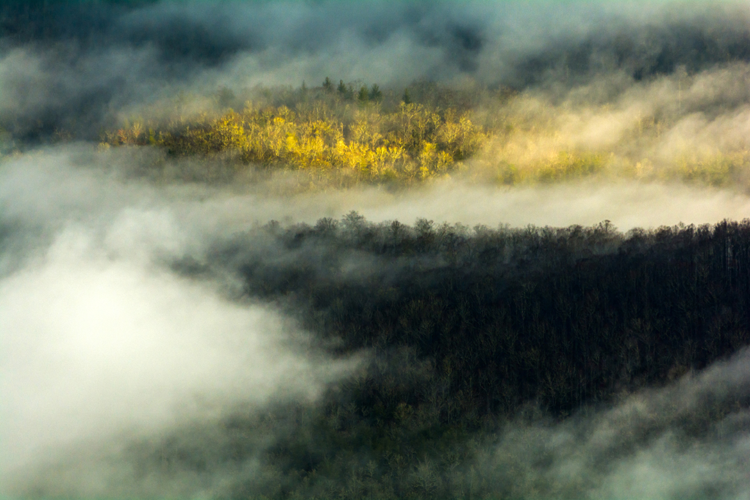 Fog Along the Pisgah National Forest