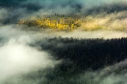 Fog Along the Pisgah National Forest
