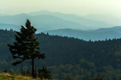 A Highlands View
