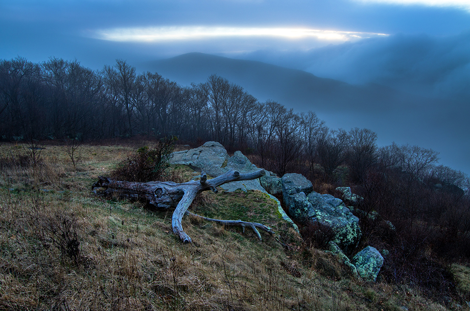 Fog in the Shenandoahs, SNP
