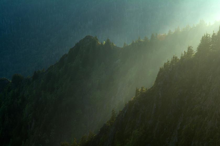 Light and Ridges