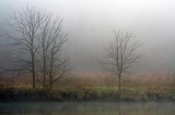 Foggy Morning on the Holston