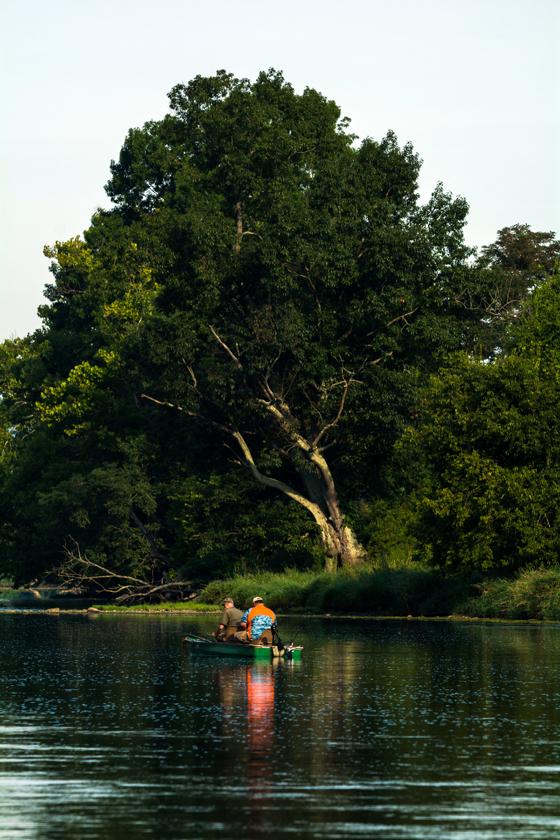 Fishing Along the Holston River