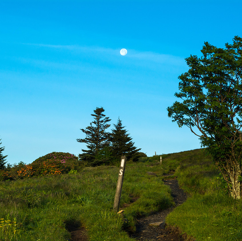 Moon Over the Appalachian Trail