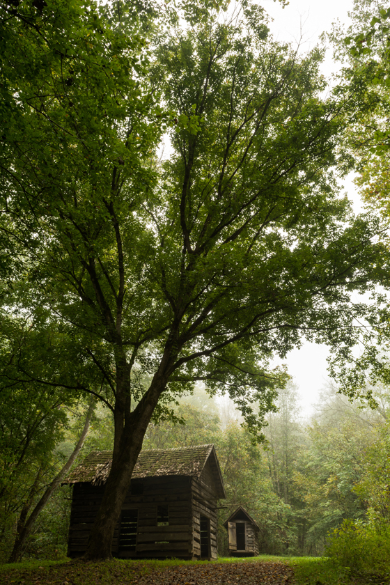 Fog on the Old Cabin at Laurel Run