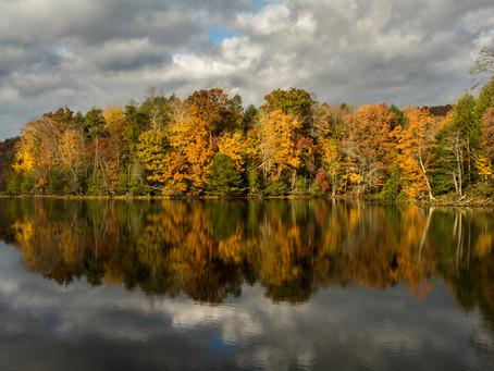 Autumn at Bays Mountain