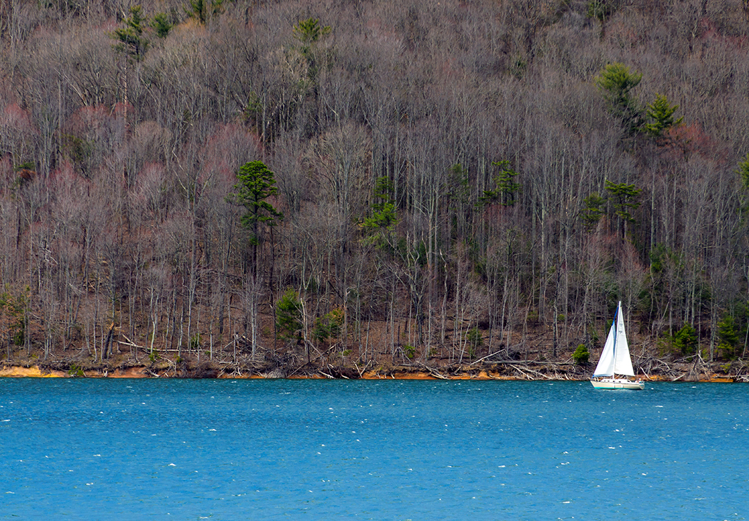 Sailing Watauga Lake