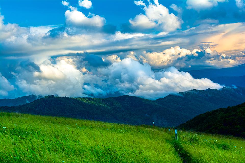 Appalachian Trail Along Max Patch