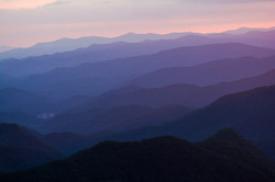 Purple Ridges in Western North Carolina