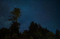 Stars Over the Smoky's