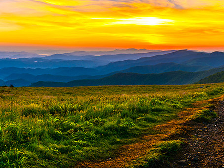 Roan Mountain and the Roan Highlands