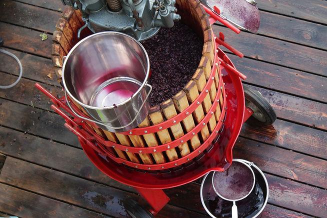 מסחטת יין סל עץ עם ענבים אדומים