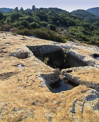 גת יין חצובה בסלע הגיר בעתיקות סומקה בכרמל