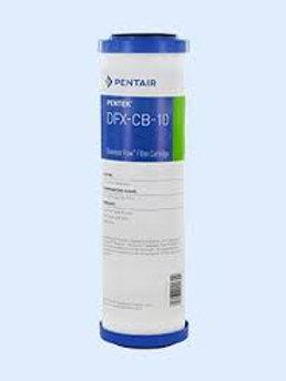 Pentair DFX 2x10 Carbon/Poly Micron 10