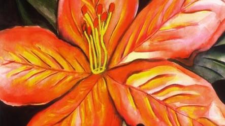 Flower of Life 1_edited.jpg
