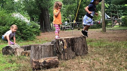 kids on stump.JPG