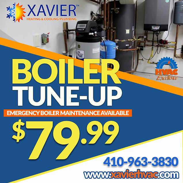 Xavier Fall-Winter Ad -2.jpg