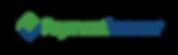 payment vision logo website.png