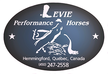 Levie Performance Horses chevaux de performance