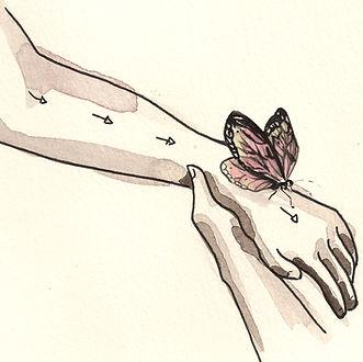vlinderen.jpg