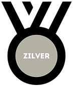 Partner - Zilver 2 CLEAR.png