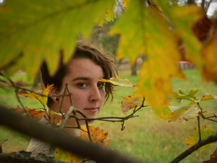 Searching for Fall at the Daniel Boone Homestead