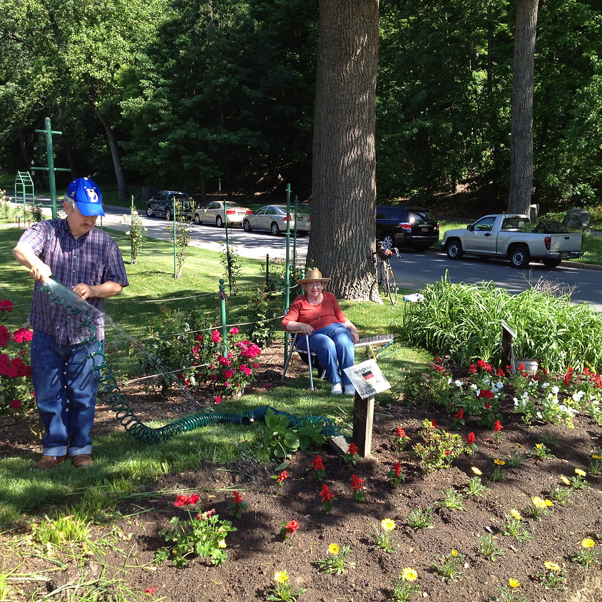 Plant Flowers at Sister City Gardens