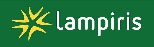Logo-Digital Lampiris Groupe.png
