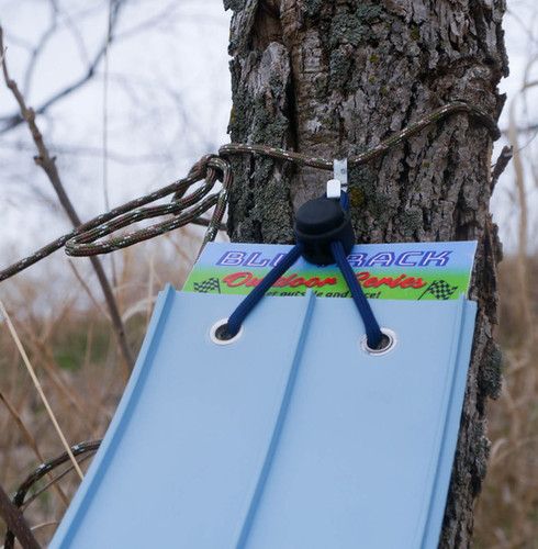Off a Tree Using a Picture Hanger