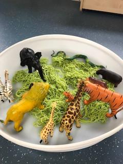zoo spaghetti round tray.jpg