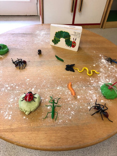 insects on table.jpg