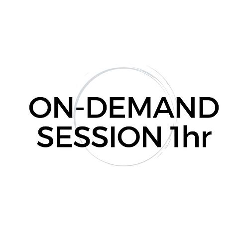 On-Demand 1hr Mentor Session