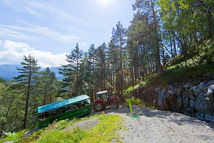 Traktorsafari.jpg