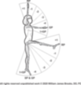 Logo (side profile - no background may 2
