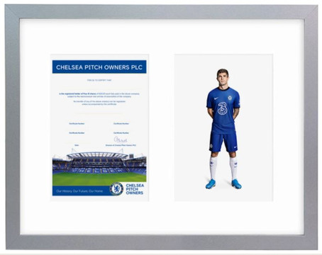 Signed Chelsea Pitch Owner Shares Available