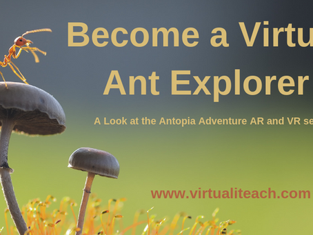 Become a Virtual Ant Explorer