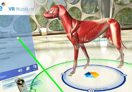 A Guide to the Lifeliqe VR Museum